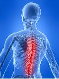 Боль в грудном отделе