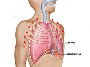 Боль под лопатками при шейно-лопаточном остеохондрозе