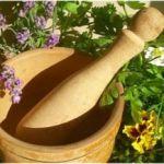 Какой эффект оказывают травы на организм при остеохондрозе