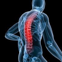 Спондилит поясничного отдела позвоночника: причины, симптомы, лечение